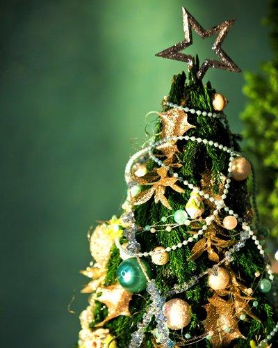 クリスマスに告白をするのならどんな告白がしたい?5選