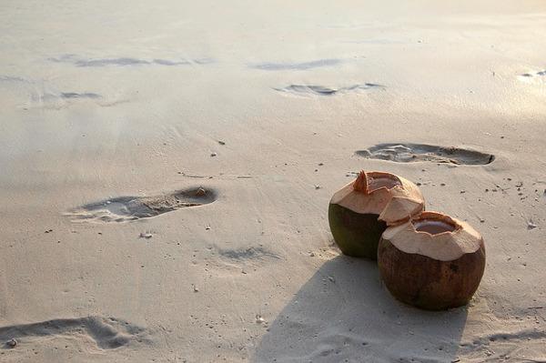 オーガニックバージンココナッツオイルの5つの魅力を教えます!