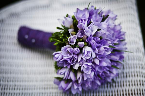 癒しの花言葉を持つ花といえばこの5つがお勧め!