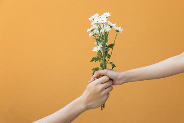 今日の誕生日の花を知ることで得られる5つのメリット